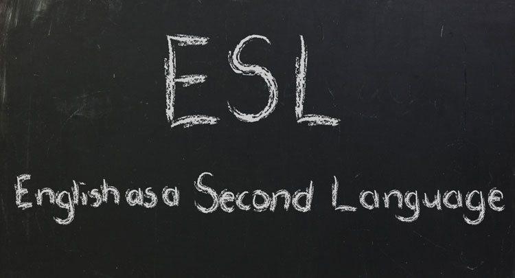 Business English as a Second Language ESL Level 1